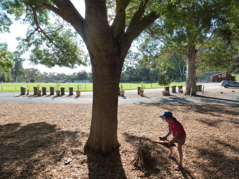 Constructing Koalee's home - Williamston