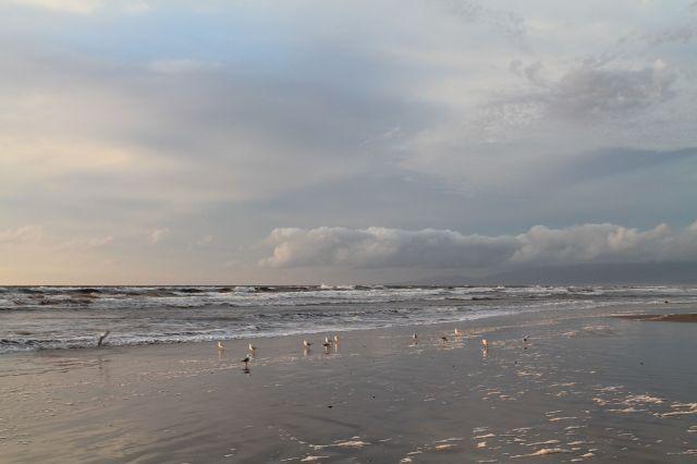 Strahan's Ocean beach