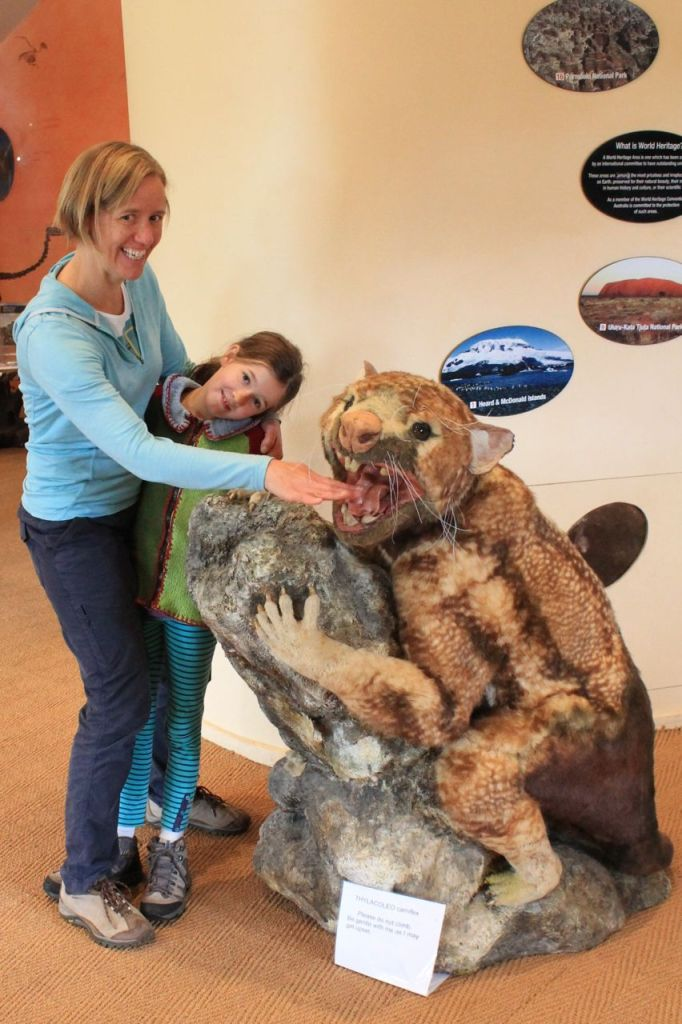 This is Thylacoleo carnifex (marsupial lion) the largest carnivorous Australian mammal