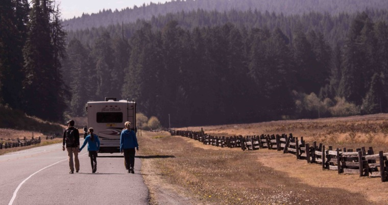 elk-prarie-in-redwood-state-forest